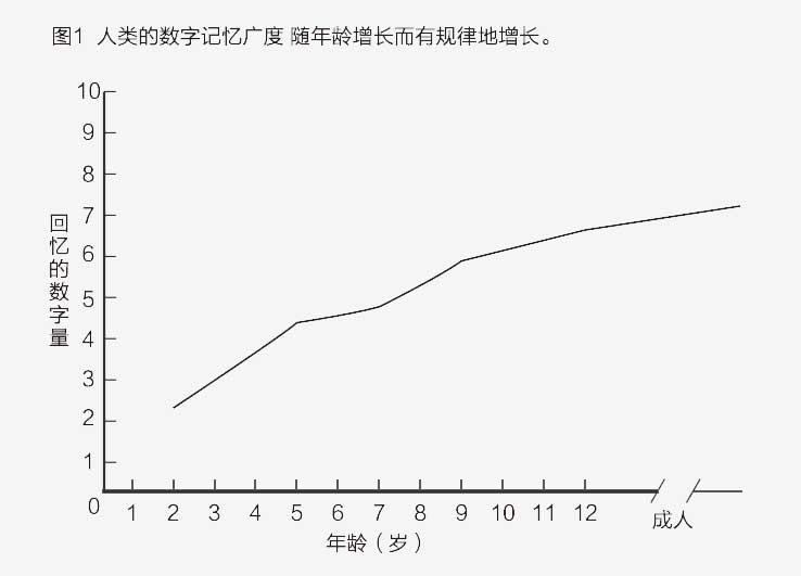 2015-SAT-年度报告-54.jpg